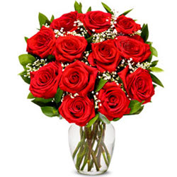 Gorgeous Red Roses Bunch in a Glass Vase