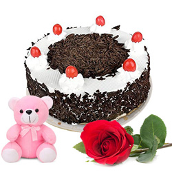 Combo of Black Forest Cake with Rose N Teddy