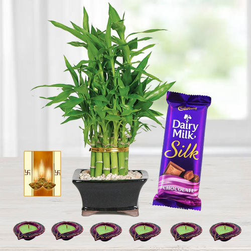 Diwali Gift for Eco Friendly People