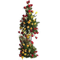 Impressive 100 Colorful Tall Preparation Roses