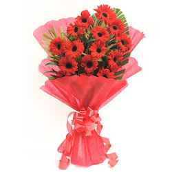 Fresh Red Gerberas Bouquet