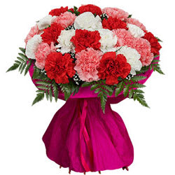 Attractive Bunch of Assorted Carnations