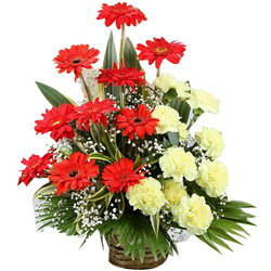 Awesome Basket Arrangement of Gerberas with Carnations