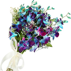 Beautiful Bouquet of Blue Orchids