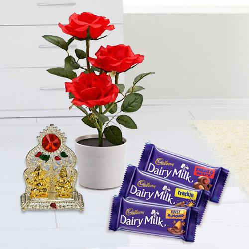 Captivating Potted Red Rose Plant with Chocolates N Mandap